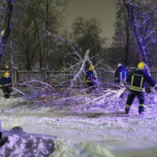 Per parą ugniagesiai daugiau nei 300 kartų vyko šalinti nuvirtusių medžių