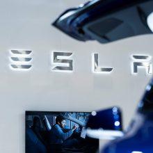 """Berlyno apylinkėse, kur """"Tesla"""" ketina statyti gamyklą, aptikta karo laikų sprogmenų"""