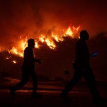Turkijoje plintant dideliam miško gaisrui evakuojama elektrinė