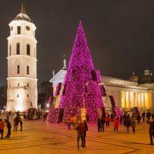 Vilniaus Kalėdų eglutės pripažinimo gražiausia dar teks palaukti