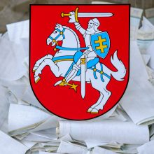 Socdemai skundžia teismui sprendimą sudaryti apygardą užsienio lietuviams