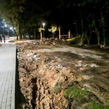 Kaune nuverstas parką bjaurojęs vaiduoklis