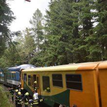 Čekijoje susidūrus dviem keleiviniams traukiniams žuvo 2 žmonės, 30 – sužeisti