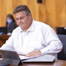 L. Linkevičius kviečia NATO kolegas skirti daugiau dėmesio Ukrainai, Sakartvelui