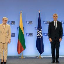I. Šimonytė: Rusijos agresija ir padėtis Baltarusijoje primena būtinybę stiprinti gynybą