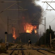 Graikijoje didžiulis gaisras pasiekė Atėnų priemiesčius