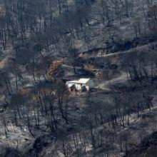 Ispanija po septynių dienų suvaldė didžiulį miško gaisrą