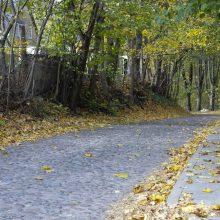 Kelininkai: kelių dangos sausos tik pietų Lietuvoje