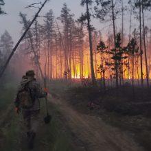 ES agentūra: miškų gaisrai šiauriniame pusrutulyje sukėlė rekordines emisijas