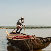 Potvyniai Nigeryje pareikalavo 33 gyvybių