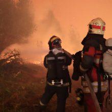 Rusijoje miškų gaisrai plinta į centrinius regionus