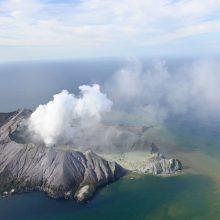 Naujosios Zelandijos ugnikalnio išsiveržimo aukų padaugėjo iki aštuonių