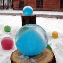 Botanikos sodą papuošė ledo burbulais