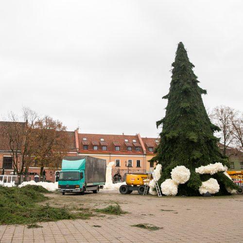 Rotušės aikštėje puošiama Kalėdų eglė  © Justinos Lasauskaitės nuotr.