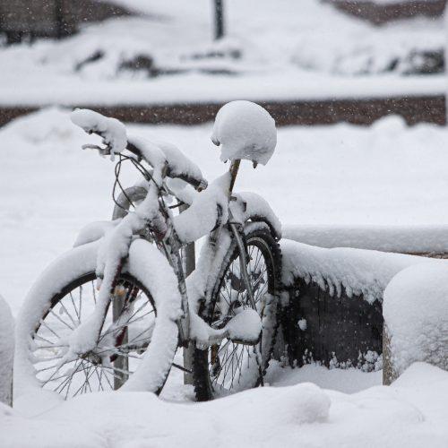 Gausus sniegas užklojo Vilnių