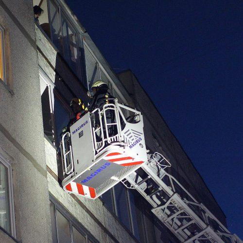 Ugniagesiai ir medikai skubėjo į Geležinio vilko gatvę