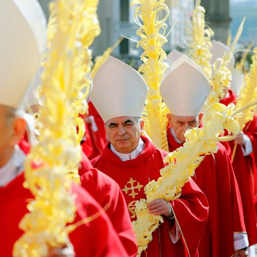 Popiežius Pranciškus palaimino palmių šakeles
