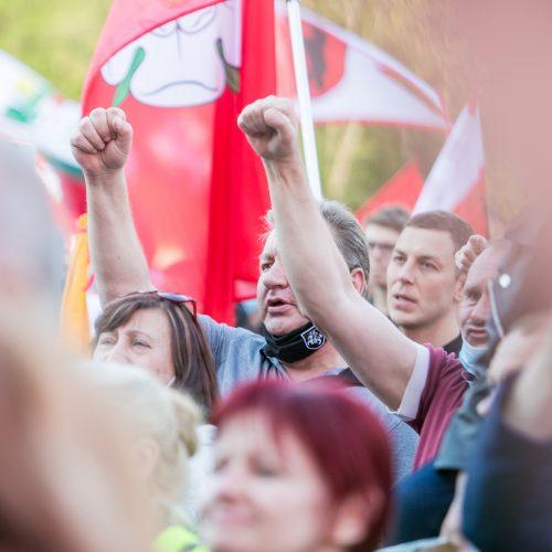 """""""Didysis šeimos gynimo maršas"""" Vingio parke  © Vilmanto Raupelio nuotr."""