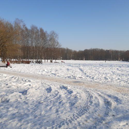 Saulėtos dienos išginė kauniečius į parkus  ©