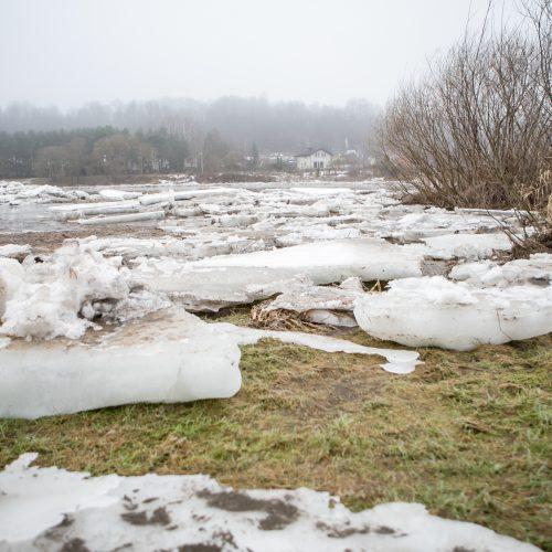 Ledo sangrūdos Radikiuose