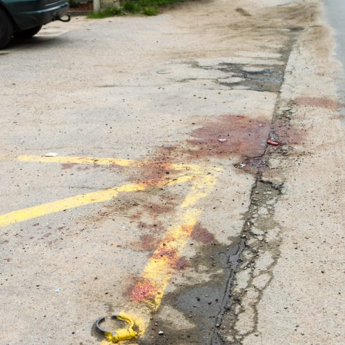 Žiaurios žmogžudystės Romainiuose vieta