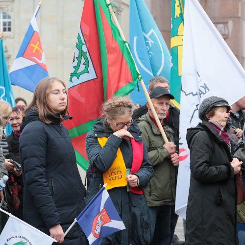 Kauno rajono gyventojai surengė piketą prie VRM  © I. Sidarevičiaus nuotr.