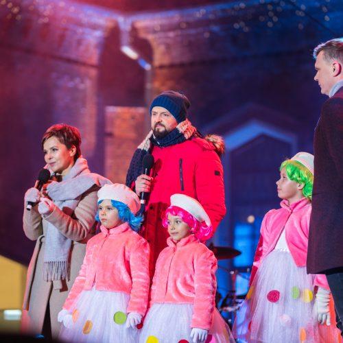 Raudondvario dvare įžiebta Kauno rajono eglutė  © Laimio Steponavičiaus nuotr.