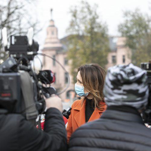 V. Čmilytė-Nielsen balsavo antrajame Seimo rinkimų ture  © P. Peleckio / Fotobanko nuotr.