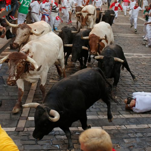 Bėgimas su buliais Pamplonoje