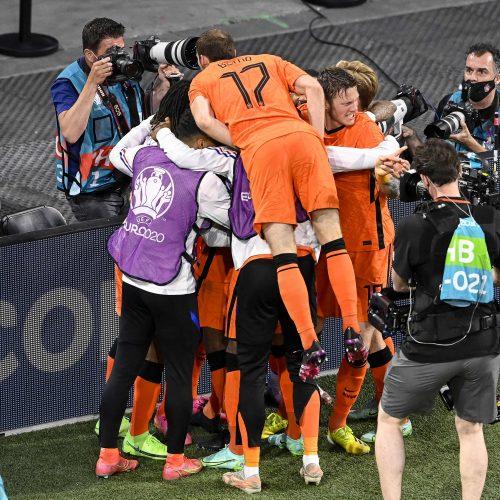 Europos futbolo čempionatas: Nyderlandai–Ukraina 3:2  © Scanpix nuotr.