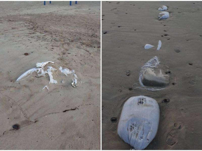 Po publikacijos – talka: paplūdimyje šiukšlių nebeliko