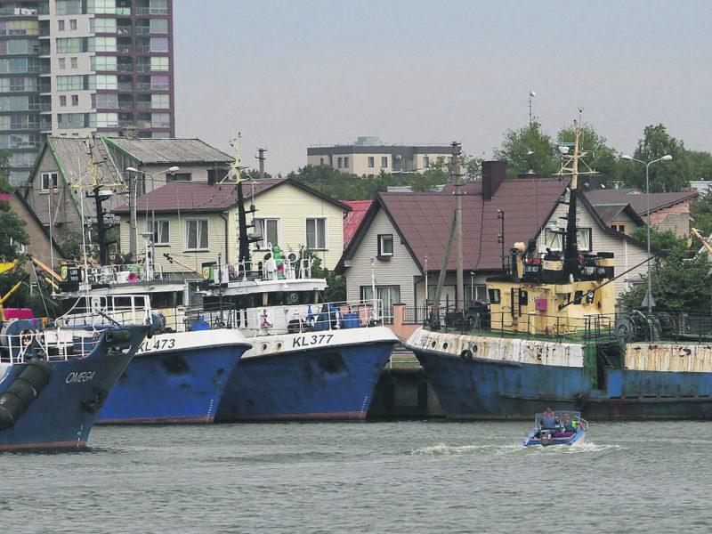 Ginčai dėl įstatymo pataisų: nykstančią žuvininkystę renovuos ar dusins?