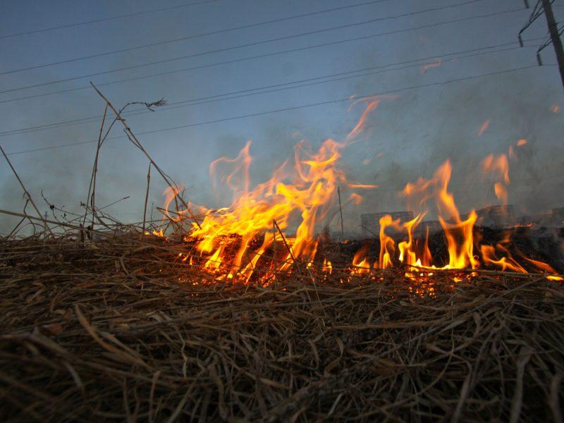 Vilniaus rajone stipriai apdegė šiukšles deginęs vyras