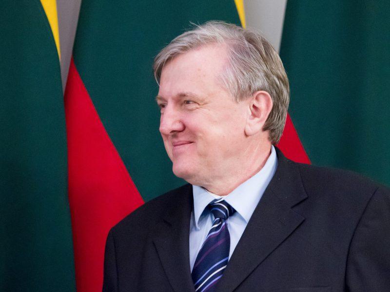 R. J. Dagys paliko konservatorių frakciją Seime