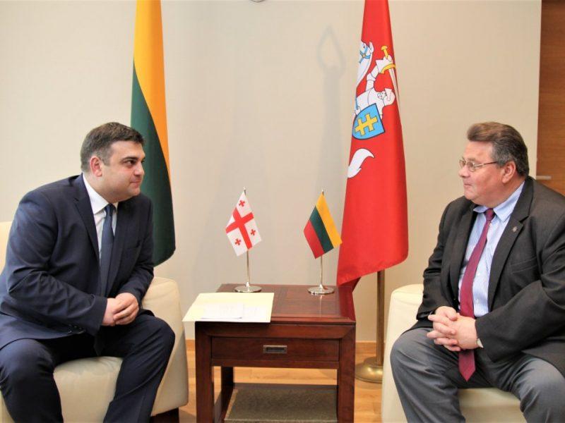 L. Linkevičius: Lietuva palaiko Sakartvelo siekį integruotis į ES ir NATO