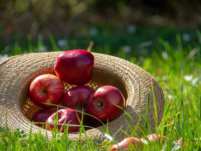 Orai: rugsėjis žeria malonias staigmenas – sušils iki 27 laipsnių