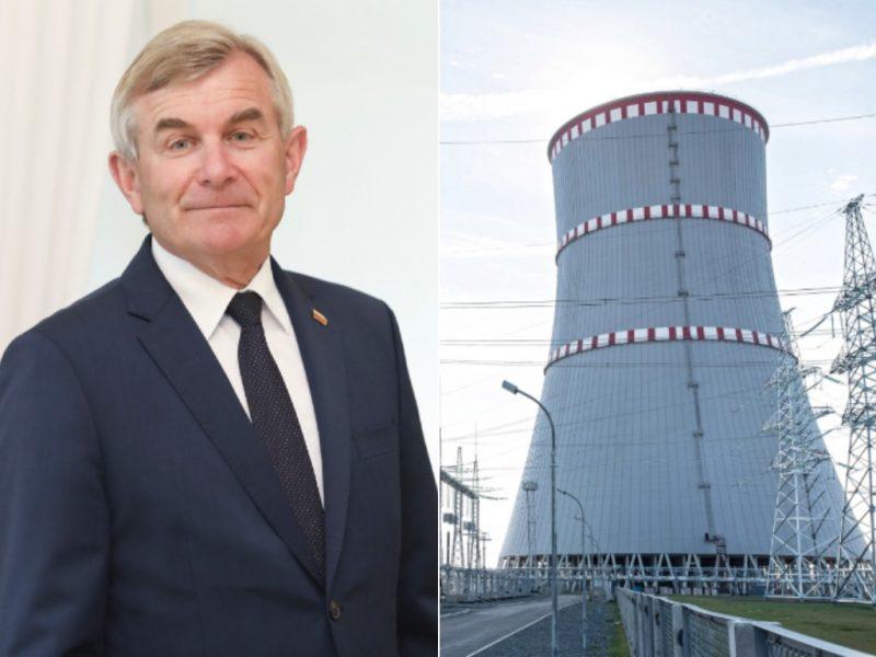 V. Pranckietis: Latvija nesiruošia pirkti elektros iš Astravo AE