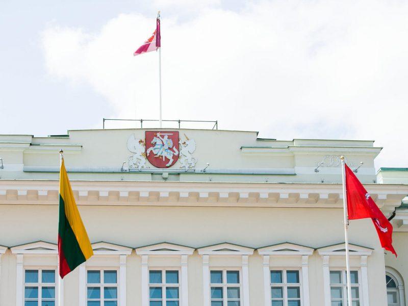 Prezidentūroje – M. Gimbutienės šimtmečiui skirta konferencija
