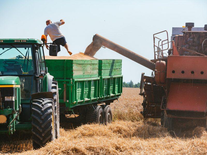Prezidento patarėja: Lietuvos taršiausi sektoriai – transportas ir žemės ūkis