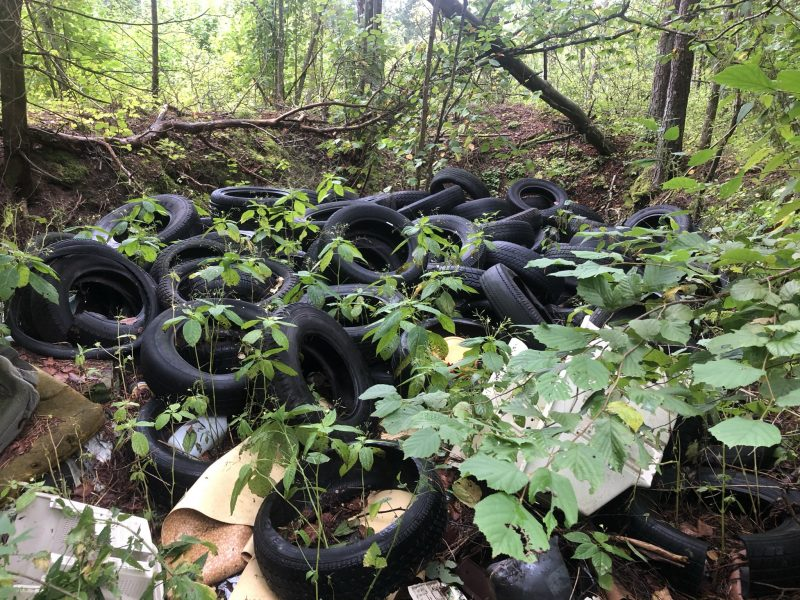 Nelegalus sąvartynas Riešėje: sklypas miške skendi svetimose šiukšlėse