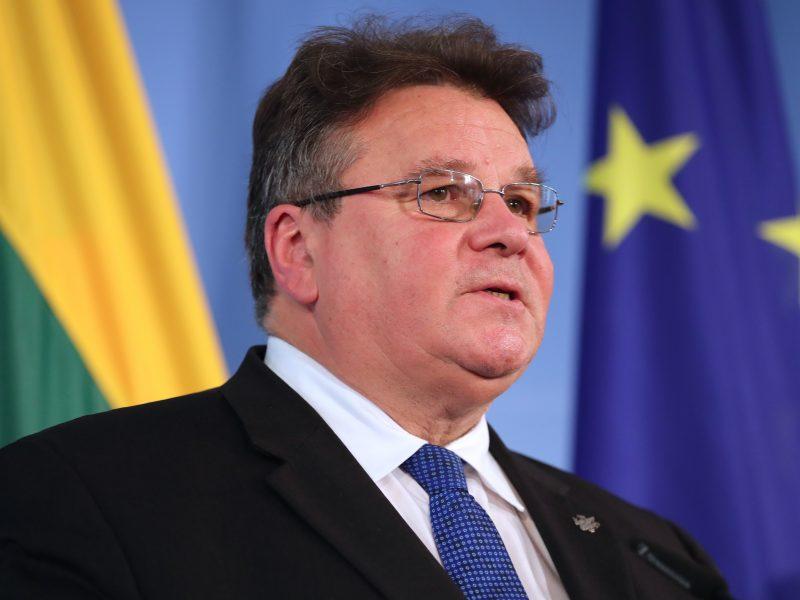 L. Linkevičius: didžiausia kliūtis taikai Ukrainoje pasiekti – Rusija