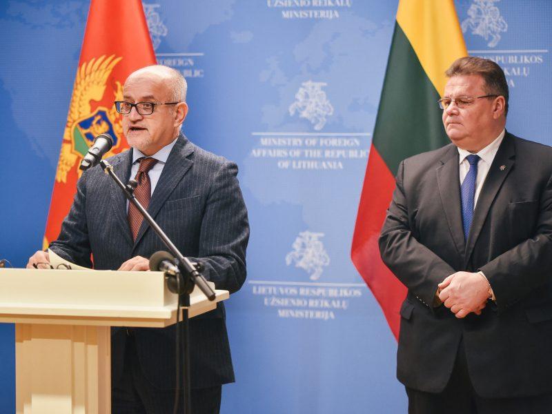 L. Linkevičius: integracijos į ES procesai vyksta ne pagal kalendorių