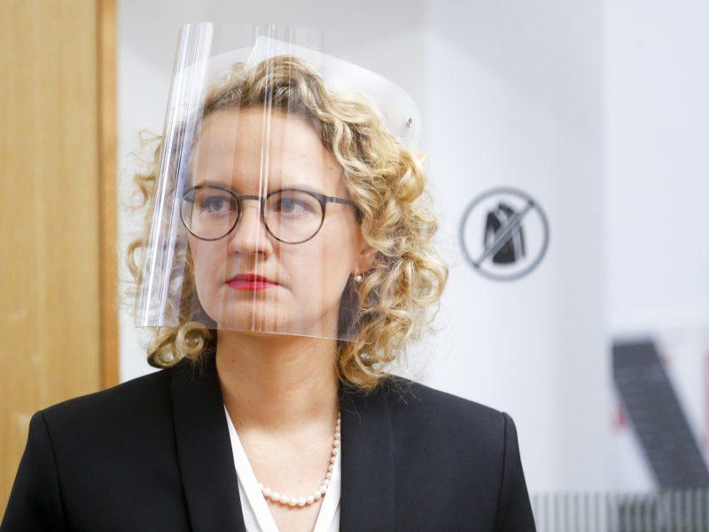 A. Armonaitė: konservatoriai ir liberalų partijos gali Lietuvai sukurti daug vertės