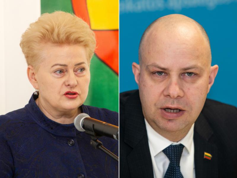 A. Veryga apie D. Grybauskaitės kritiką: zoologiniai palyginimai – nesolidūs