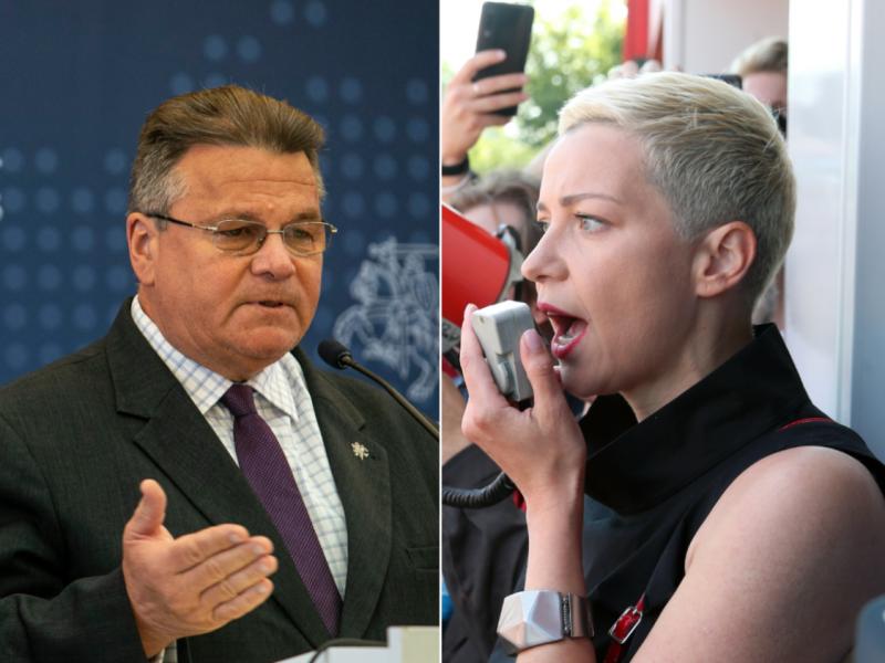 L. Linkevičius: M. Kalesnikavos pagrobimas yra gėdingas