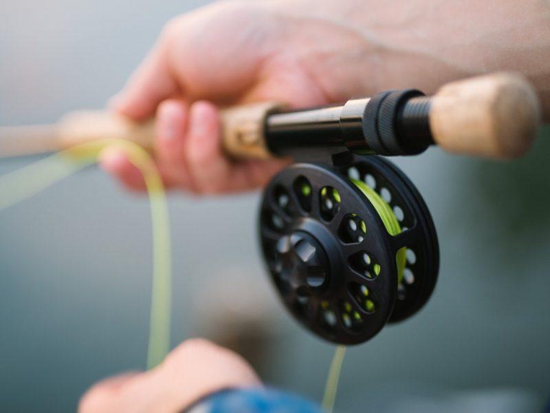 Seimas ėmėsi siūlymo įstatymu uždrausti žvejybą ir medžioklę Žuvinto rezervate