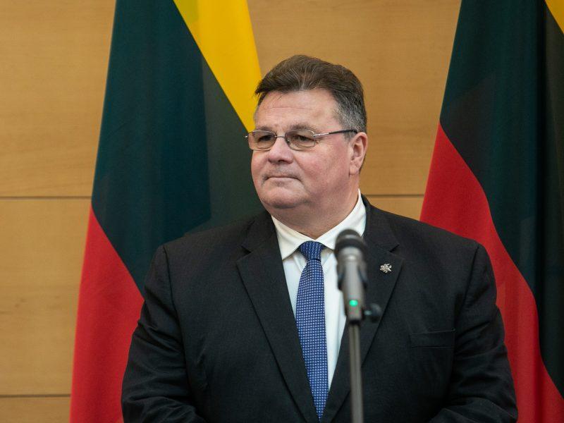 L. Linkevičius sako, kad gynybos planams politinių kliūčių nėra