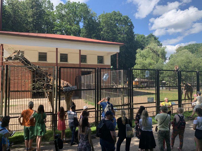 Lietuvos zoologijos sodas atšventė 82-ąjį gimtadienį
