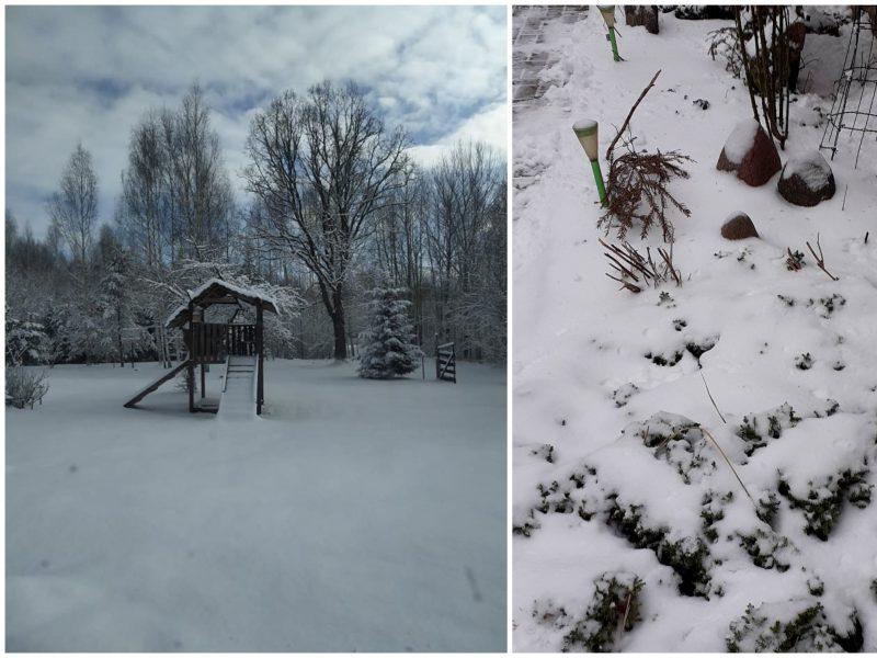 Savaitės pabaiga bus vėjuota, su sniegu ir trumpalaikėmis pūgomis