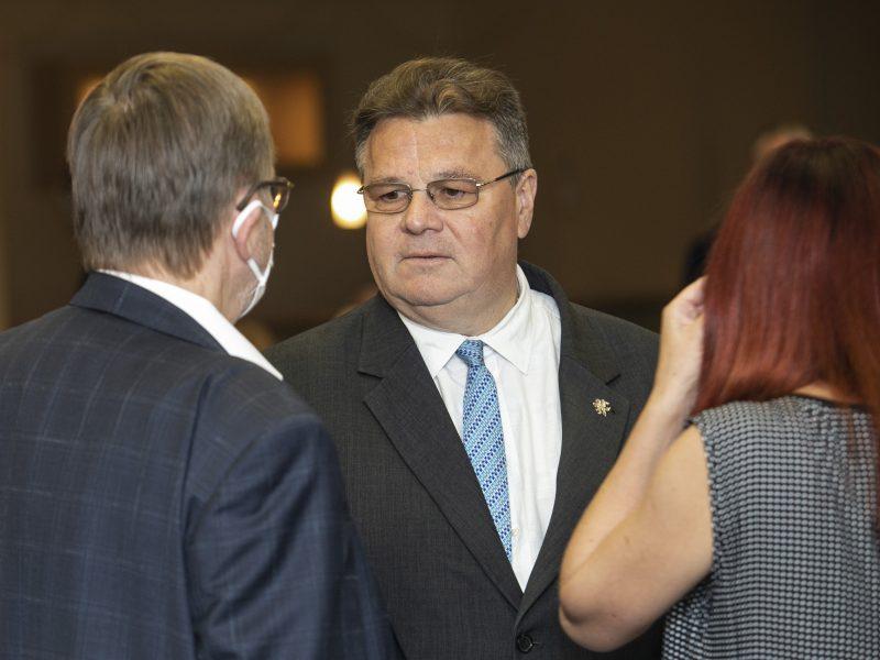 L. Linkevičius ramina konservatorius: dėl rinkimų apygardos kreipiausi į VRK ir VTEK